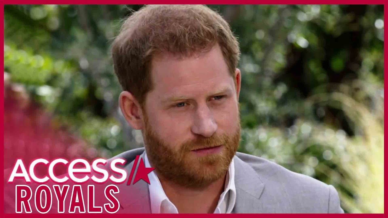 Prince Harry's Suit In Oprah Interview Is A Nod To Archie