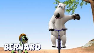 Download Bernard Bear | Mountain Bike Race! AND MORE | Cartoons for Children