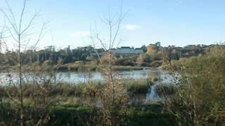 La Loire en Loir et cher 2 à Blois