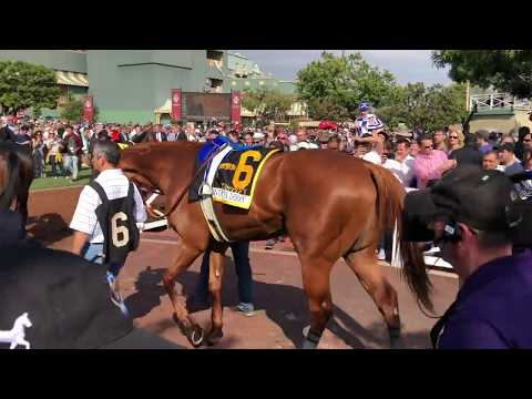 Belmot Stakes 2018, Justify: Mile and a Half?