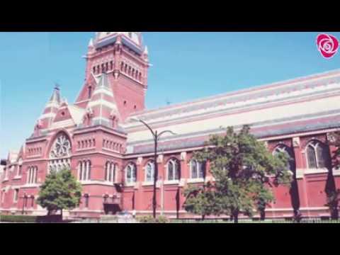 Harvard University is vest university in the world