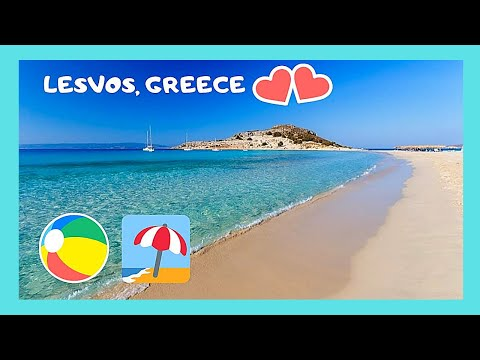 Island of LESVOS, EXPLORING the wonderful BEACH of VATERA, most beautiful in GREECE