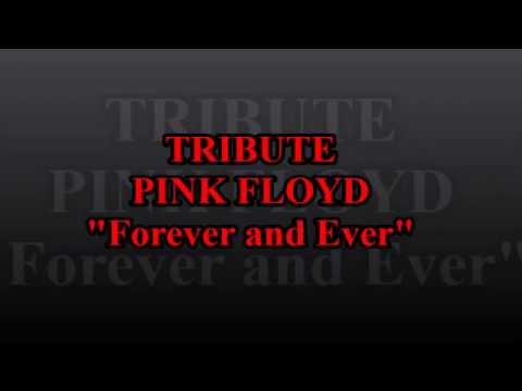 """TRIBUTE PINK FLOYD """"Forever And Ever"""" Side 1/4"""