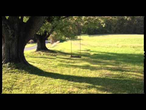 Animated Tree Swing, Swinging