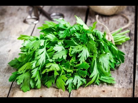 This Herb Will Treat Any Problem With Your Pancreas, Liver and Kidney