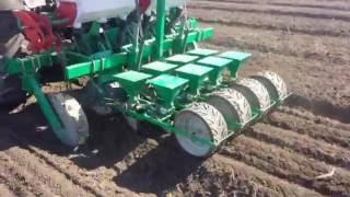 Весенний  посев лука сеялкой РОСТА СОТ 42 ВАС52 103