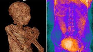 Forscher untersuchen Mumie im Sarg eines Hohepriesters – und finden eine schwangere Frau