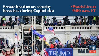 Senate holds hearing on security breaches during Capitol riot - 2/23 (FULL LIVE STREAM)