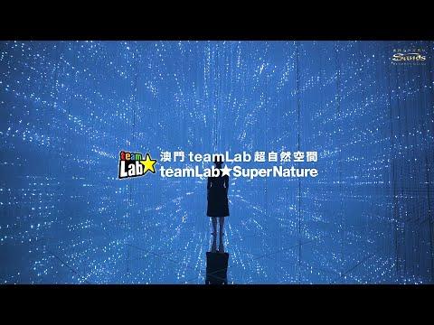 teamLab SuperNature Macao Soft Opening (TC/EN)
