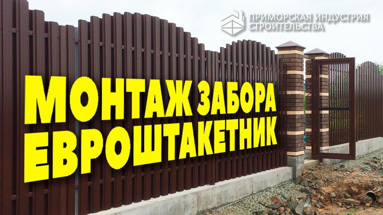 Заборов из евроштакетника | Металлоштакетник | Строительство и ремонт
