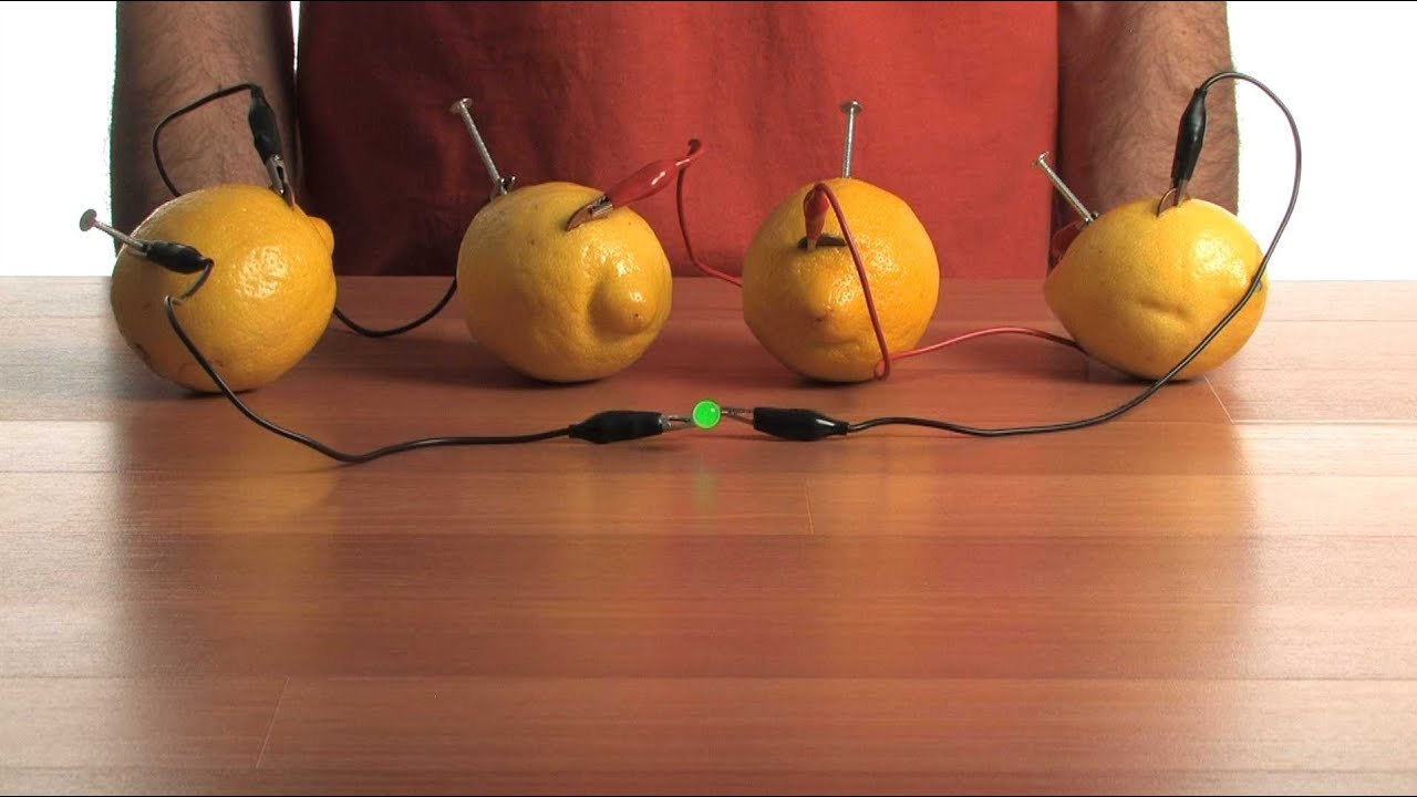 Fruit Light Bulb