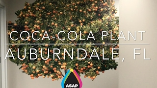 ASAP Prints: CocaCola Wall Mural