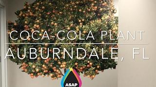 ASAP Prints: CocaCola Wall Mural