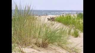 Plaża Gdańsk -Stogi