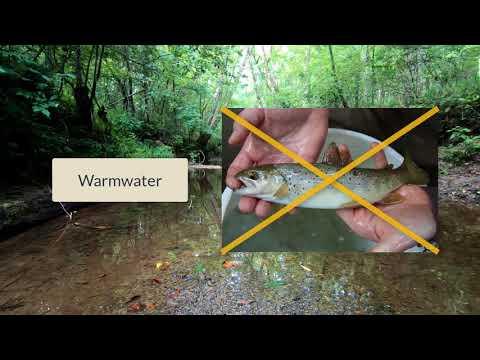 MSAFS - Backpack Electrofishing