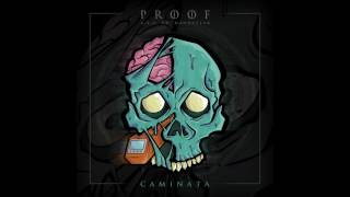 PROOF  CAMINATA DISCO COMPLETO