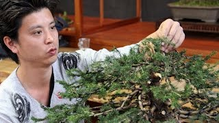 Bonsai demo by Masashi Hirao