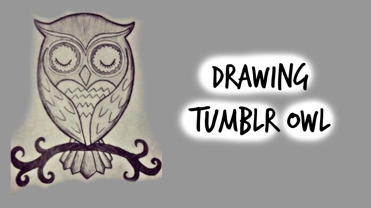 How To Draw Cute Owl Tumblr Inspired Youtube