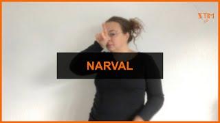 BIOLOGIE MARIN - Narval