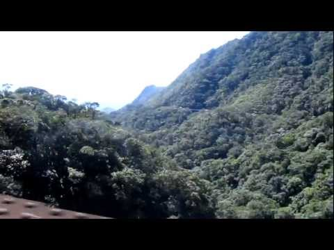 Railroad, Brazil's Atlantic forest