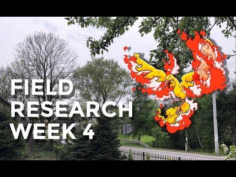 Field Search Week 4 in a Rural area