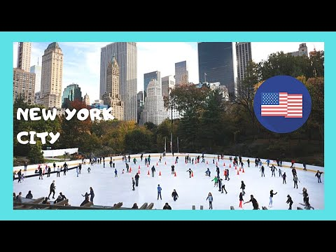 NEW YORK CITY: Visiting CENTRAL PARK'S ICE SKATING RINK  on a freezing day