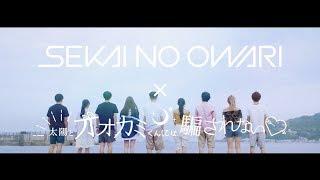 新曲「YOKOHAMA blues」が番組主題歌となっているAbemaTV「太陽とオオカ...