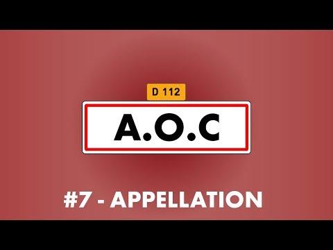 Vin'Stache #7 : L'Appellation d'Origine Compliquée ? Les Vins AOC - Partie 1   English Sub