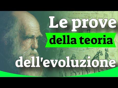 le-prove-della-teoria-dell'evoluzione