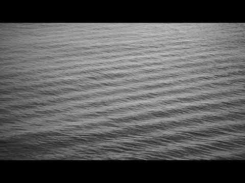 Ionophore – Pardis