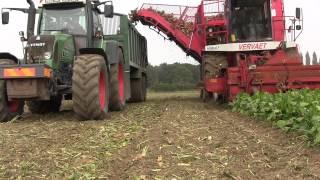 Start of 2014 Sugar Beet Harvest