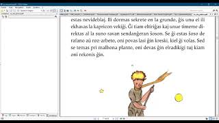 Esperanto with the  Little prince/ Chapter 5