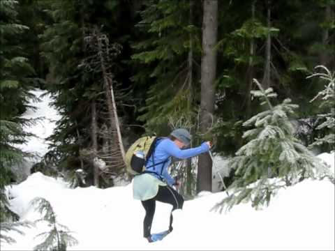 Snowshoe Hike around Salt Creek Falls SnoPark
