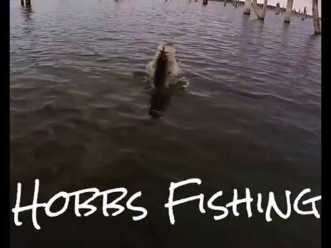 Hobbs Fishing Channel