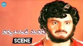 Nippulanti Manishi Movie Scenes - Balakrishna Tries To Take Revenge  On Sarath Babu || Balakrishna