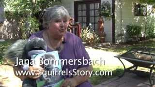 A Squirrel's Story: A True Tale by Jana Bommersbach