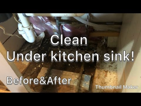 2018/Cleaning motivation!/Under kitchen sink/Removed rotten boards/MOLD!