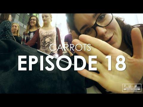 CARROTS | EPISODE 18 | VLOG | DISCOVER SPLIT PROJECT | ParaMeetsWorld