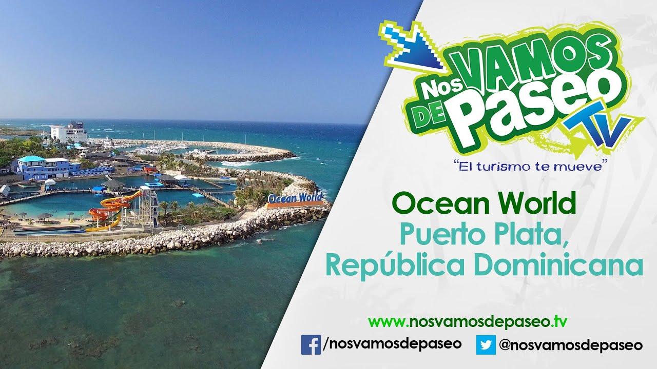 Dominicana de puerto plata 5
