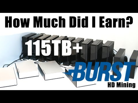 How Much Did I Earn In June? 115TB+ Burstcoin HardDrive Mining Rig