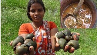 மருத்துவக்குணமிக்க  ஏரி  நத்தை கோலா உருண்டை குழம்பு / Snail kola orundai kulambu