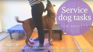 Service Dog Tasks for Anxiety