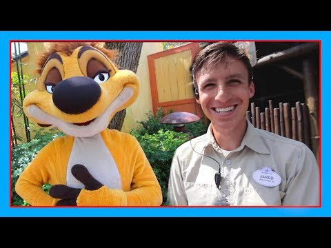 CAST MEMBER RESCUES CRITICALLY ENDANGERED ANIMALS AT ANIMAL KINGDOM | Disney World Vlog
