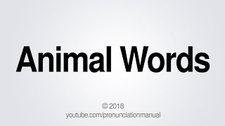 How to Pronounce Animal Words