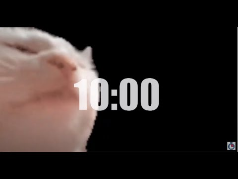 CatJam 10 Minute Timer with Music (Tropical Paradise) and No Alarm