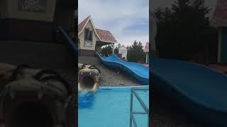 Calypso Aqualoop Water Slide