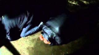 Протестующие на трасcе Одеcса Киев убивают людей(, 2014-02-20T16:13:53.000Z)