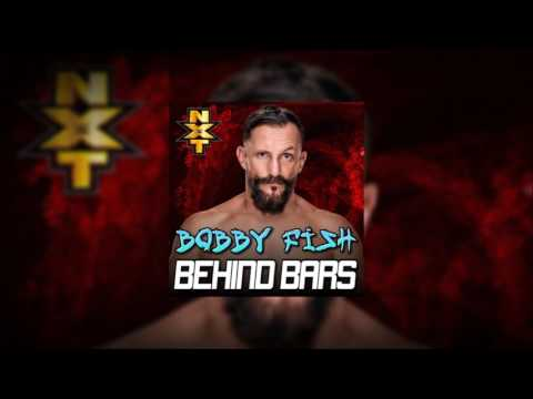 WWE NXT Themes: