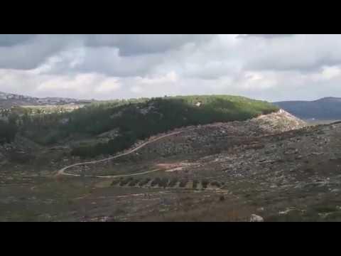 החקלאות מחזקת את האחיזה בחוות מעוז צבי צפון השומרון