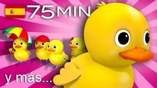 Cinco patitos | Y muchas más canciones infantiles | ¡75 min de LittleBabyBum!